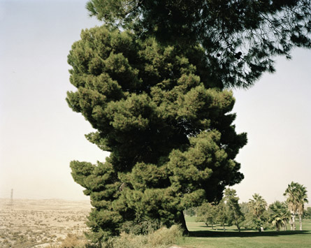 Marie-José Jongerius: Edges of the Experiment, Taft, CA, 2008