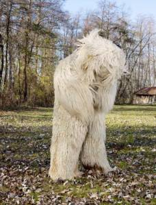 Charles Fréger: Medved (Ours), Ptuj, Slovenië