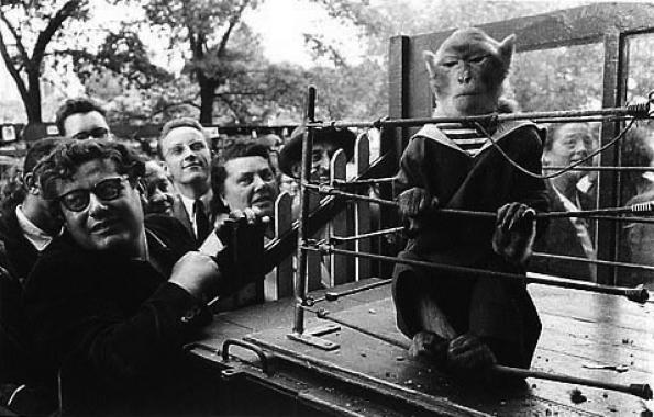 Robert Doisneau: Les animaux superieurs, 1954