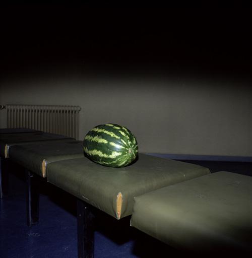 © Marnix Goossens Melon  1997