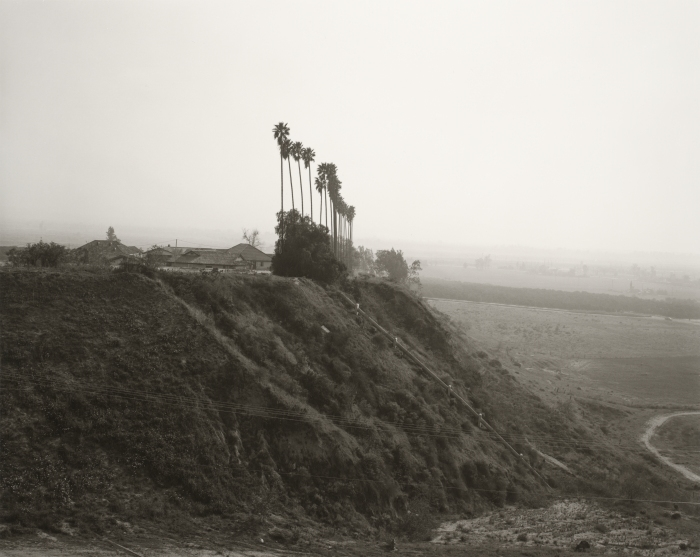 © Robert Adams: New development on a former citrus-growing estate, Highland, California, 1983 / Courtesy Fraenkel Gallery, San Francisco et Matthew Marks Gallery, New York