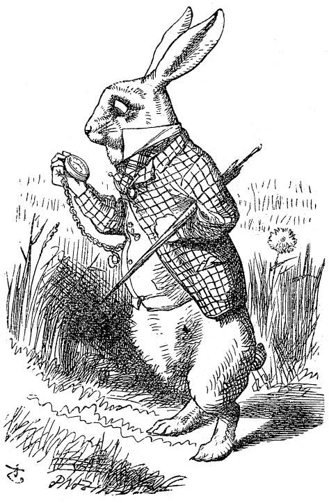 Het witte konijn uit Alice in Wonderland heeft altijd haast. Originele tekening van John Tenniel.