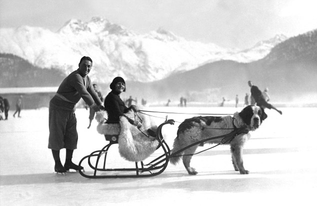 Chaplin, Sydney - Actor, Great Britain - - holidaying with his wife in a dog sled in St. Moritz, Switzerland - 1930 - V